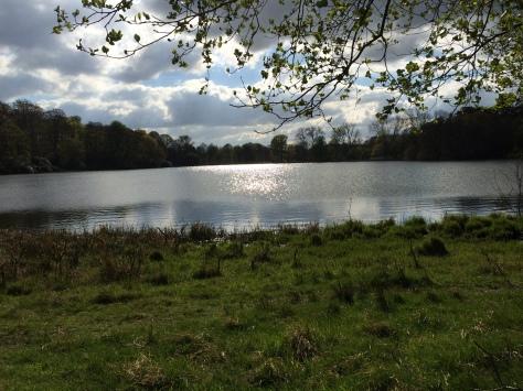 Wollatin Park es una de las mejores zonas verdes que he visitado.