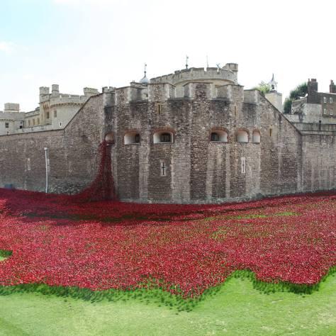 Otra perspectiva de la instalación hace unos meses. Foto: Tower of London
