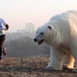 Sorpresas que te animan a correr más deprisa. Photo: Sky web